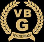VB Gumi 2010 Kft